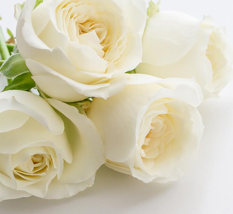 協会理念のイメージ画像 白いバラの花束の写真